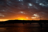 Manly Harbor Sunset