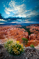 Bryce Canyon Inspiration