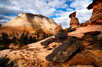Zion Mesa and Hoodoos
